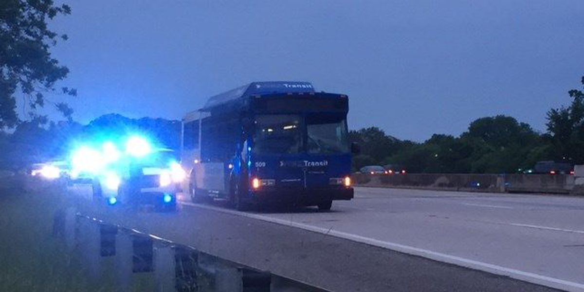 Pedestrian hit by Max bus on I-59 N