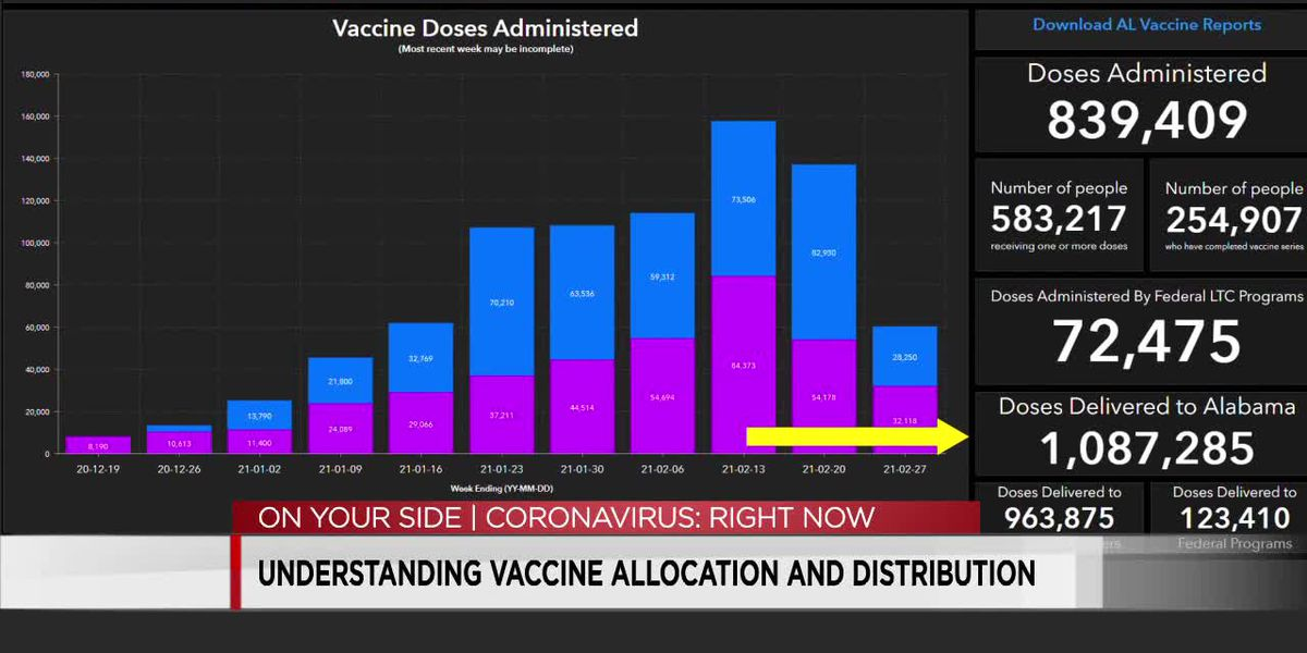 Understanding vaccine allocation and distribution