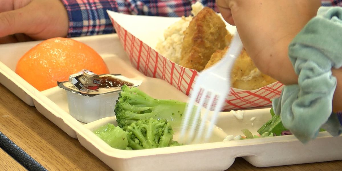 Federal program offering free meals to all students