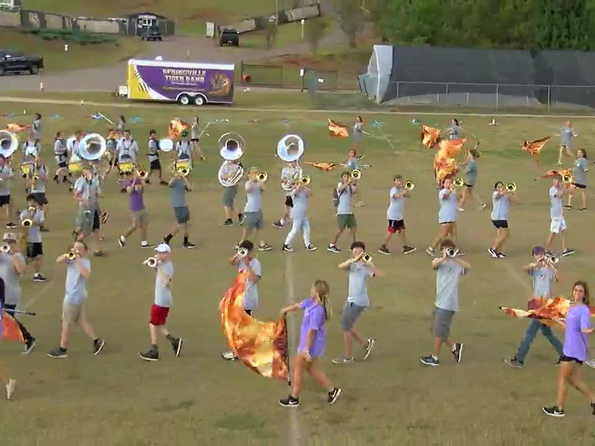 Springville HS band feeling mighty in Tiger Land on Fridays