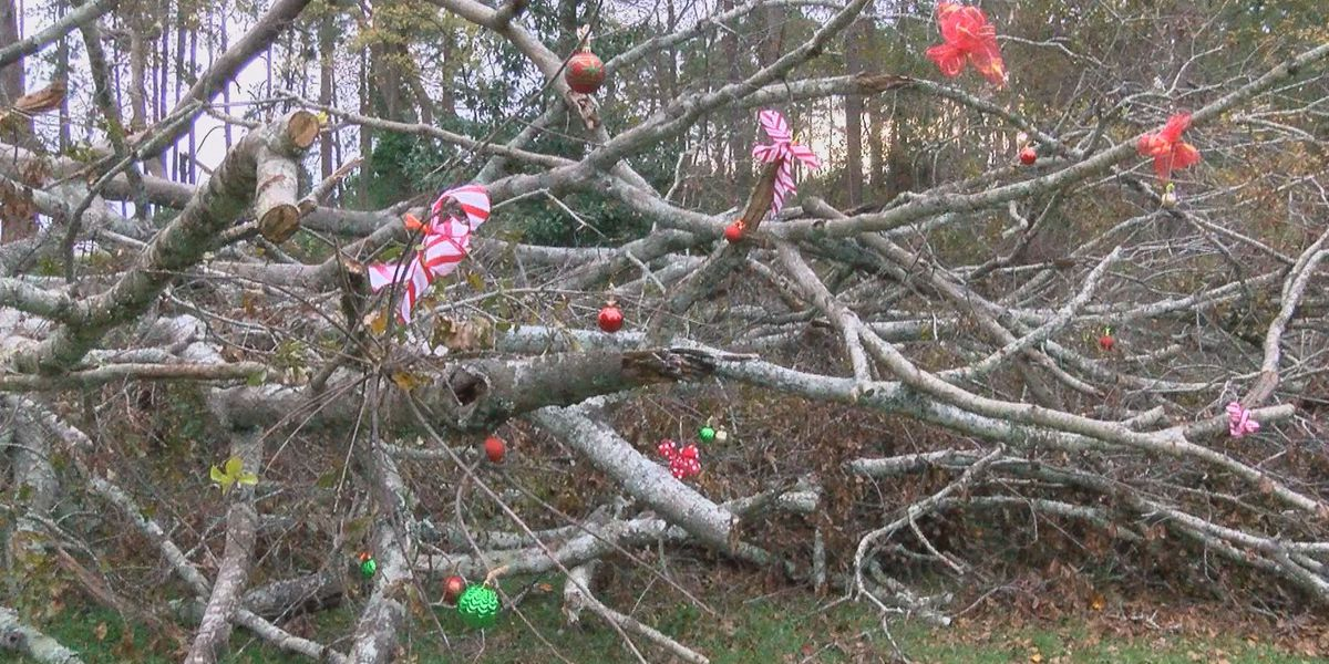 South GA woman turns hurricane debris into Christmas tree