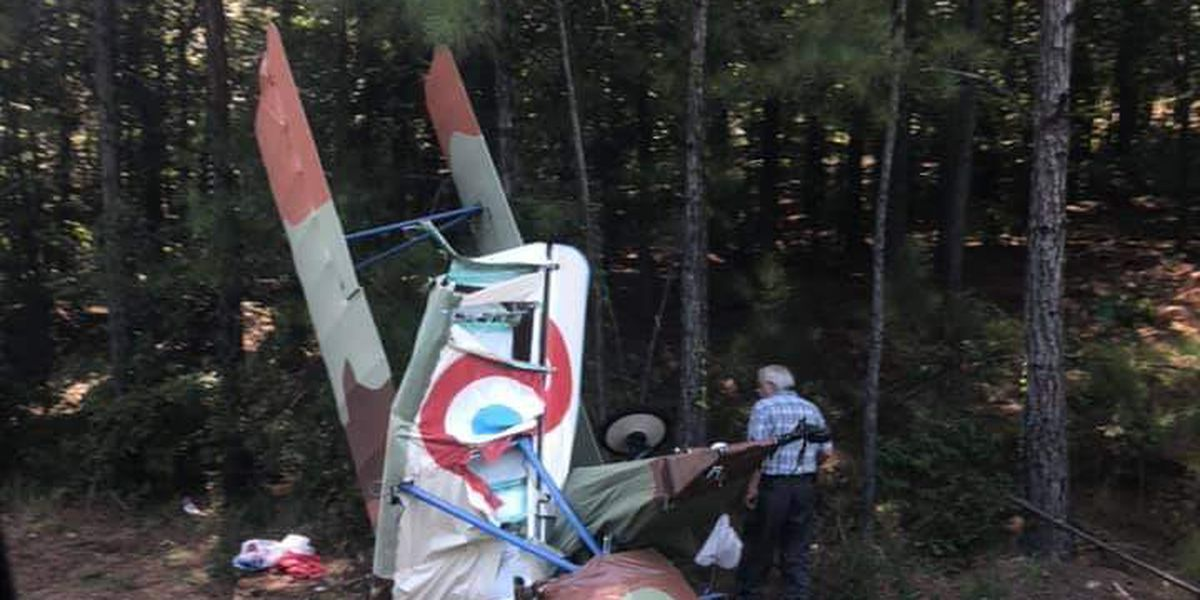 Small plane crash in Talladega Co.
