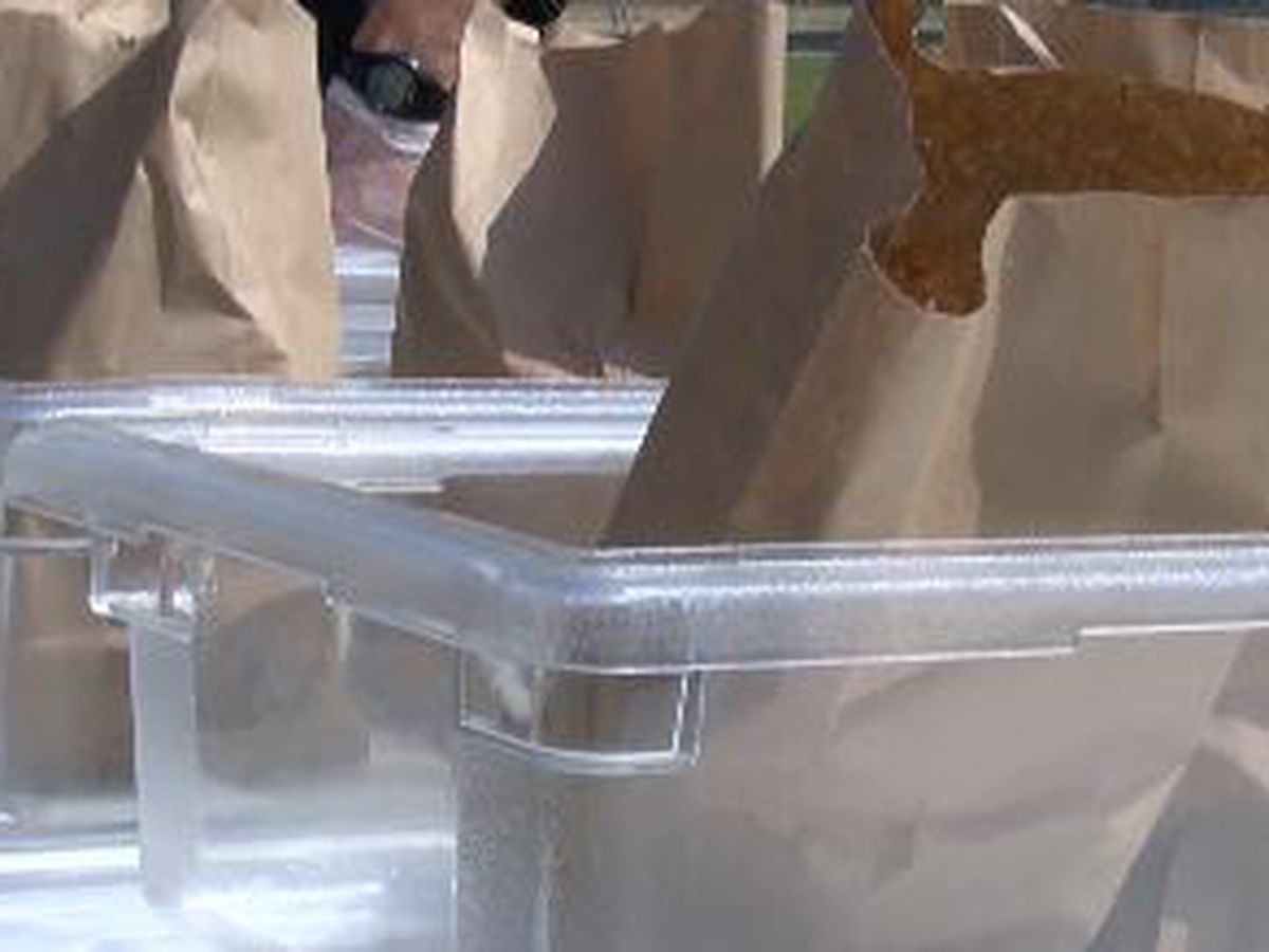Birmingham City Schools get help with some meals for students