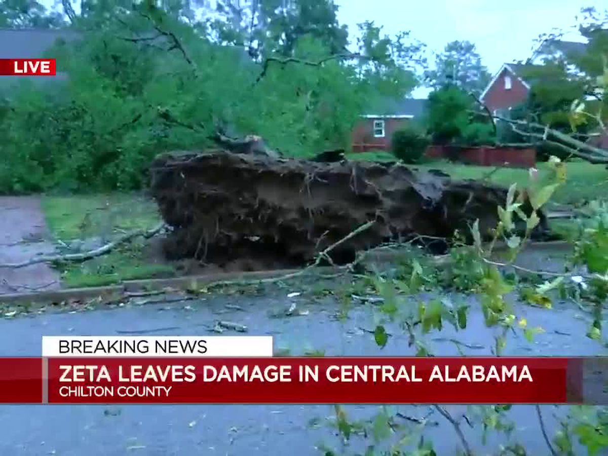 Trees uprooted, damage in Chilton County neighborhood