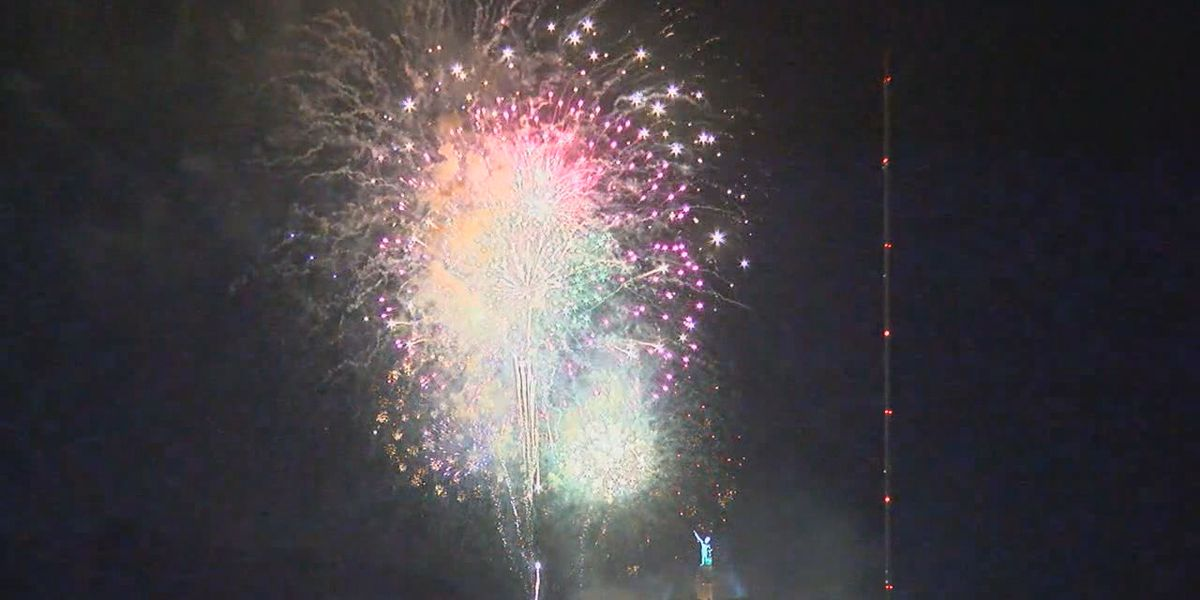 Ways to keep your dog calm during NYE fireworks