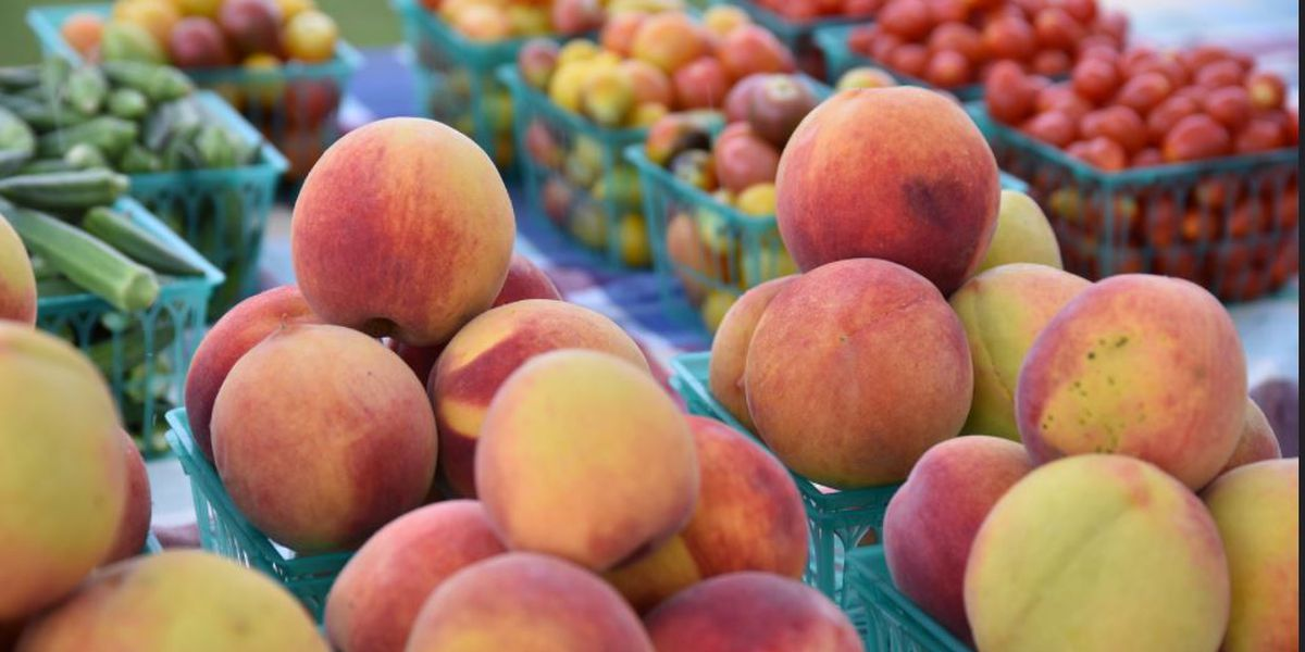 Sweet Grown Alabama! A guide to Alabama farmers markets