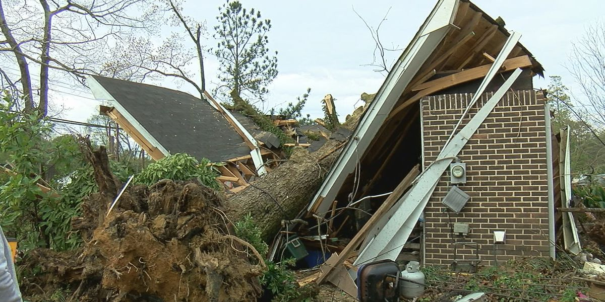 Mt. Olive home demolished during severe storms, family dog survives