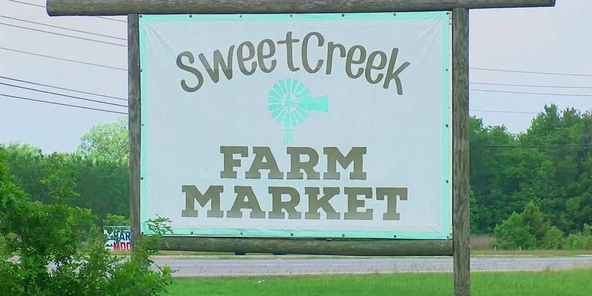 Absolutely Alabama: Sweet Creek Farm Market