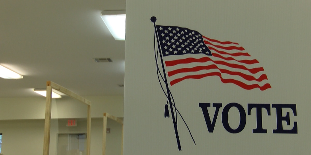 VIA offering free rides to some polling locations in Birmingham