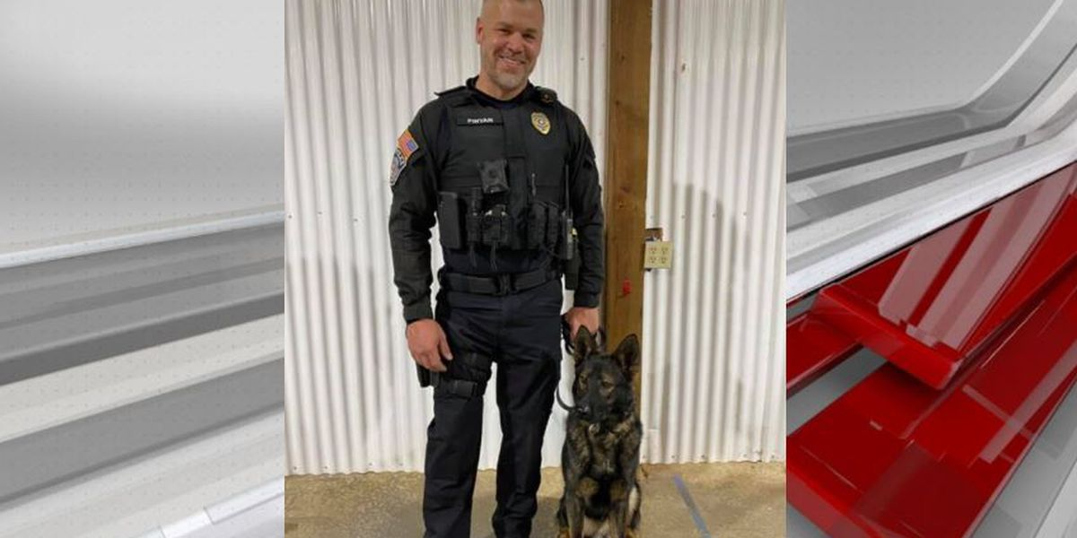 Oneonta Police introduce new K-9 officer