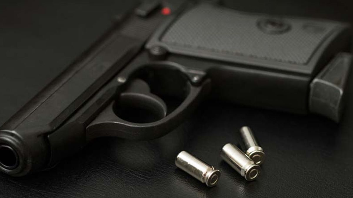 Bill would ban state enforcement of federal gun laws