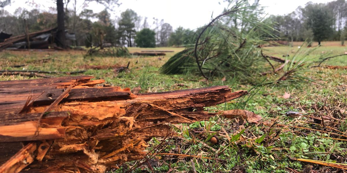 Calhoun Co. severe storm recovery assistance
