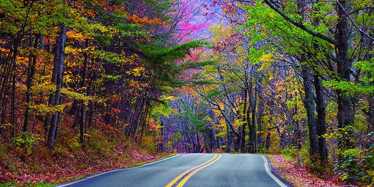 Interactive map predicts Alabama's fall foliage colors by weekend