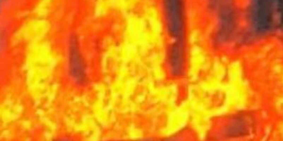 2 killed, 1 injured in overnight Shelby Co. house fire