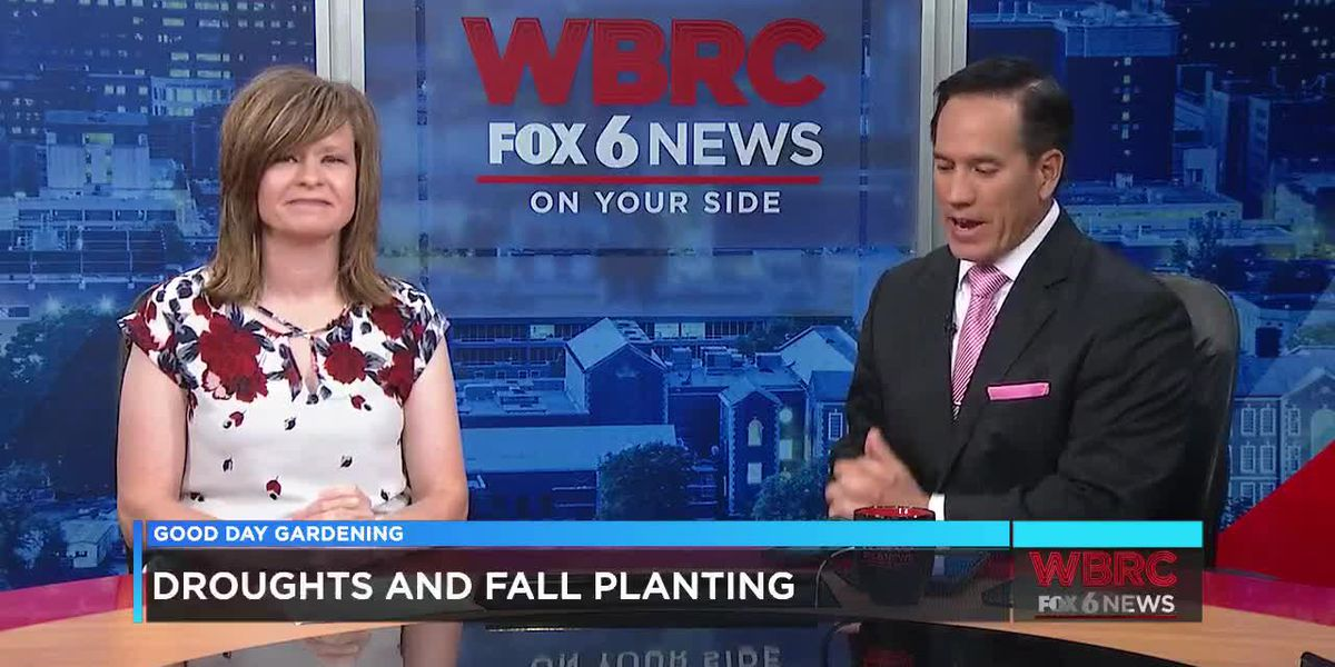 Droughts and Fall Planting