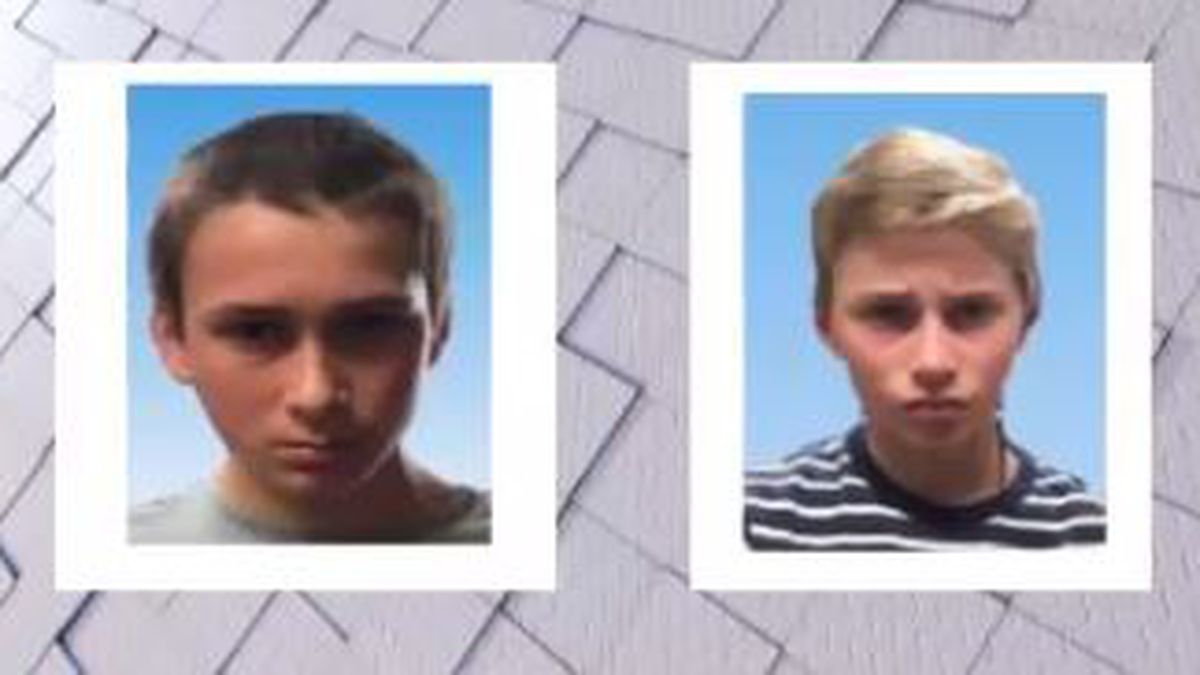 UPDATE: Emergency Missing Child Alert Canceled for two St. Clair County boys, both found safe