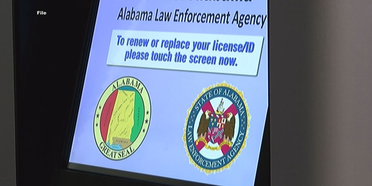 Renewing your driver's license online? One wrong click could cost you