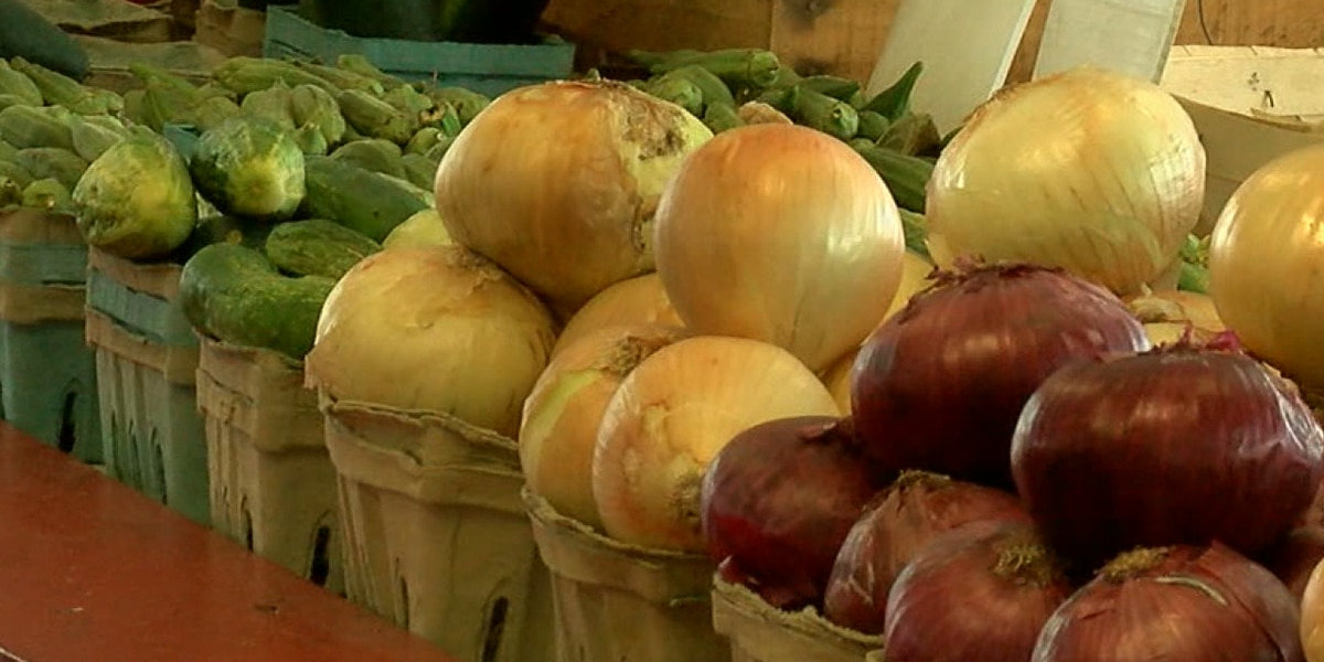 Alabaster farmers market happening every weekend this summer