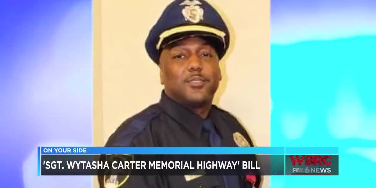 'Sgt. Wytasha Carter Memorial Highway' bill