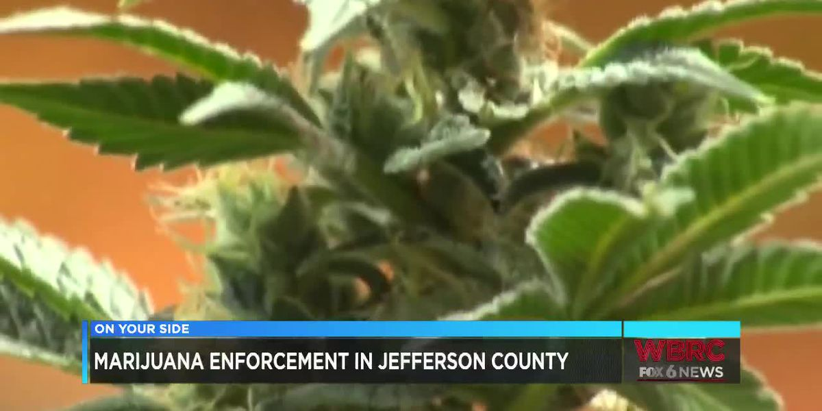 Marijuana enforcement in Jefferson County