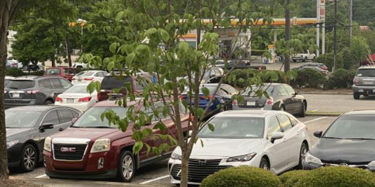 'Memorial Tree' planted at Shelby Baptist to honor COVID victims, caretakers