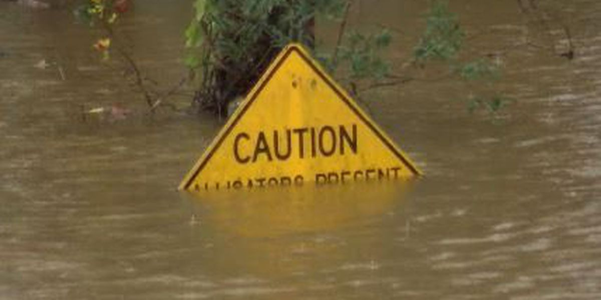 Alabama EMA asking FEMA for storm clean up help; More at 7:05 a.m.