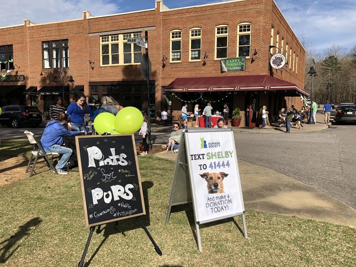 KW's Pints For Pups at Area 41 Pizza Co. raises money for Shelby Humane Society