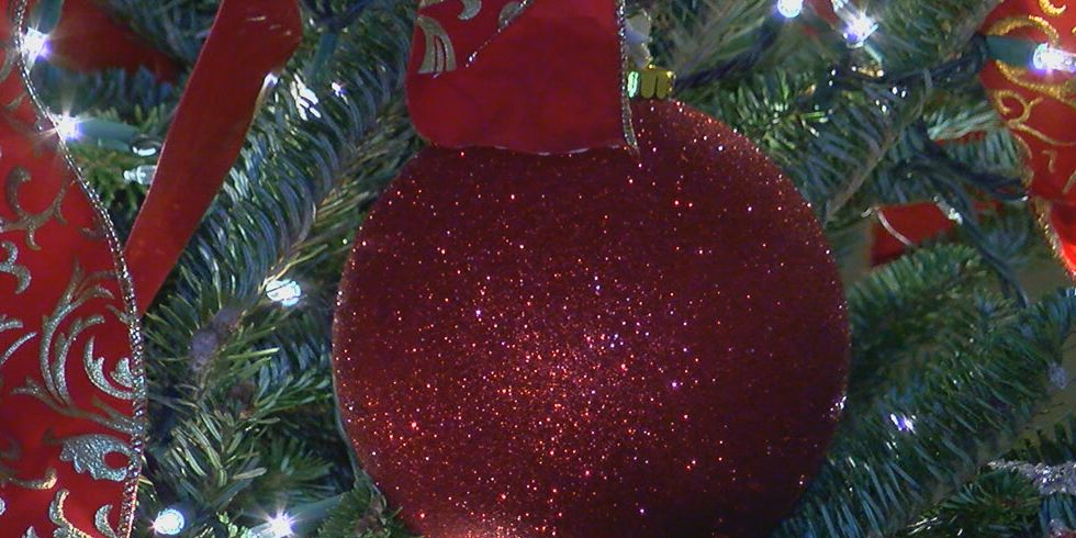 Is your Christmas tree making you sick?