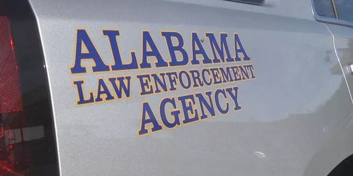3 dead in early morning Elmore County crash