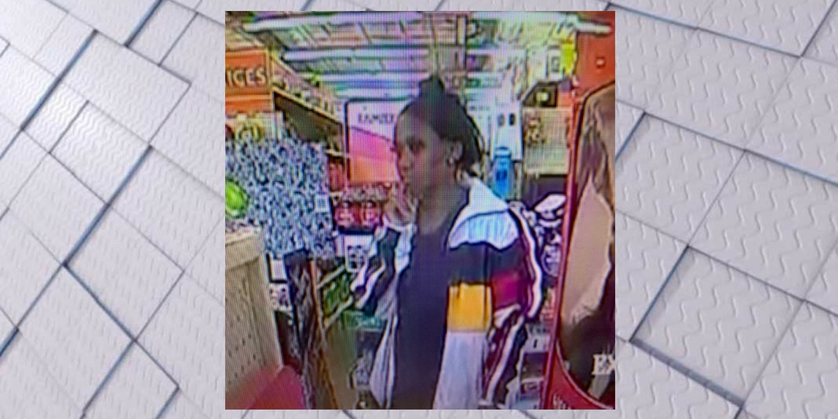 Shelby County Investigators search for theft suspect