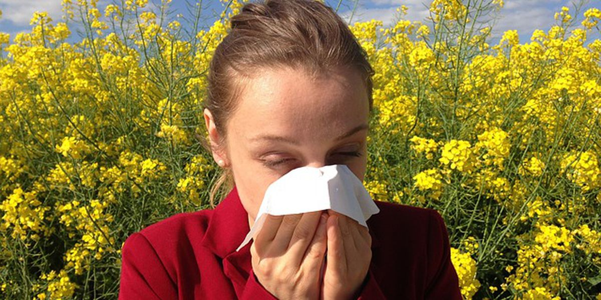 Tips to alleviate your child's seasonal allergy symptoms