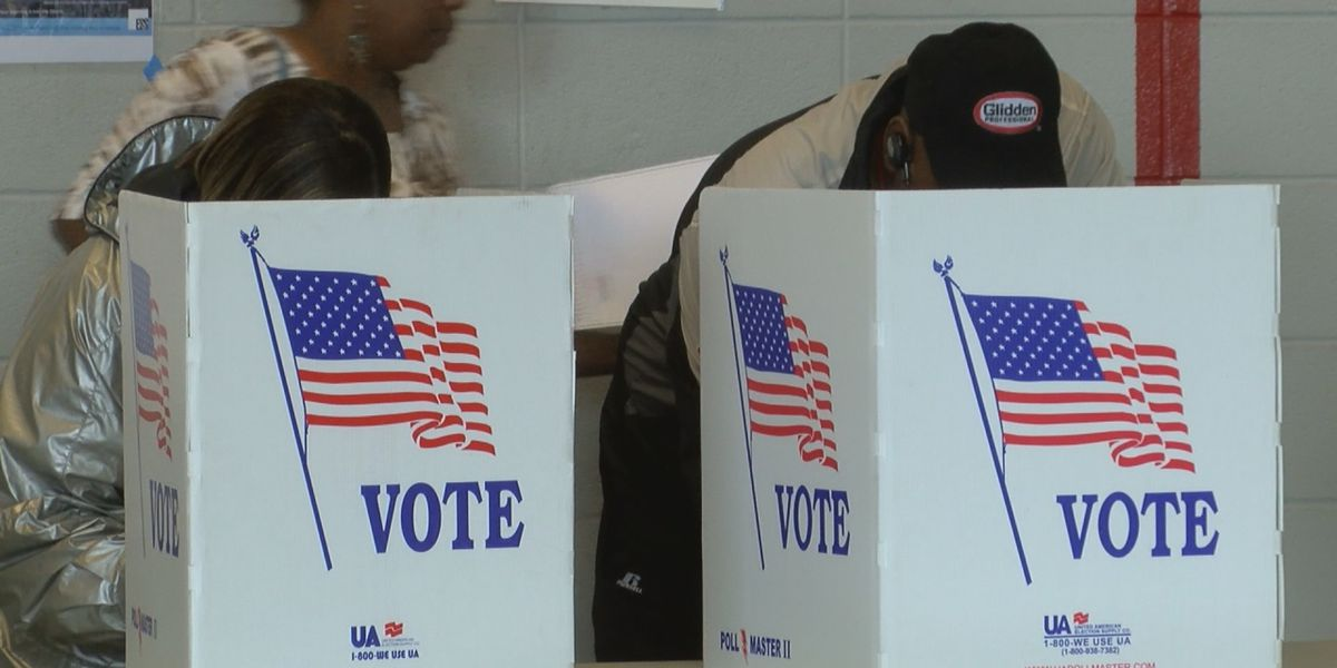 State Rep. John Rogers says he's working to get early voting to Alabama
