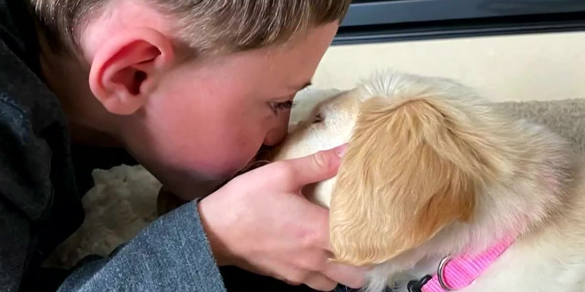 Boy with prosthetic leg gets a puppy born without a paw