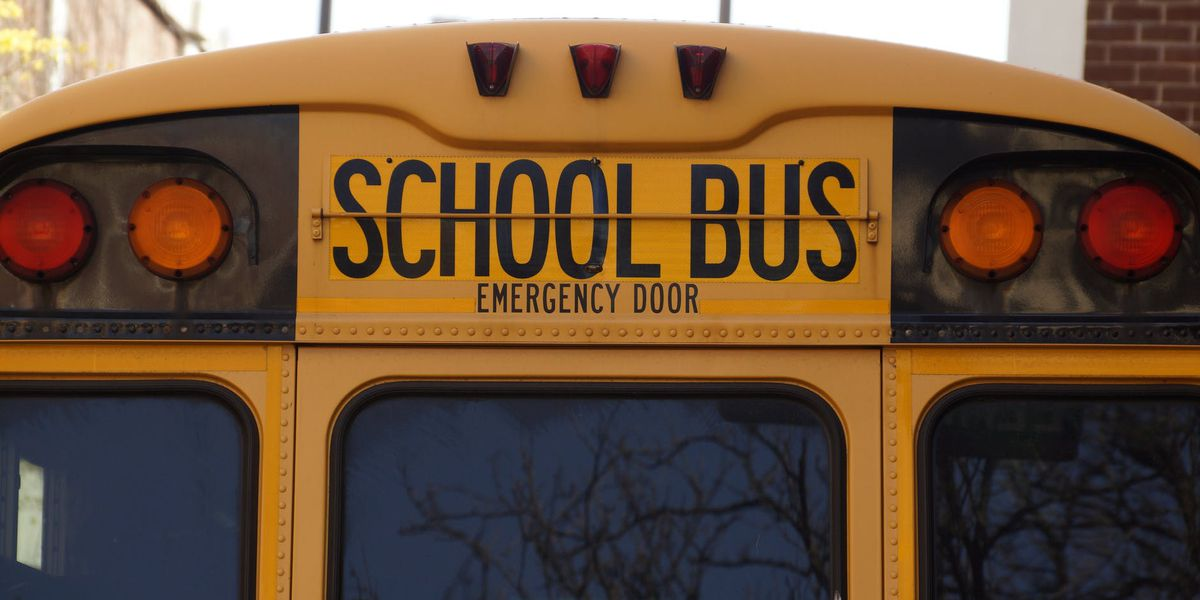 Do you know rules for school bus zone safety?