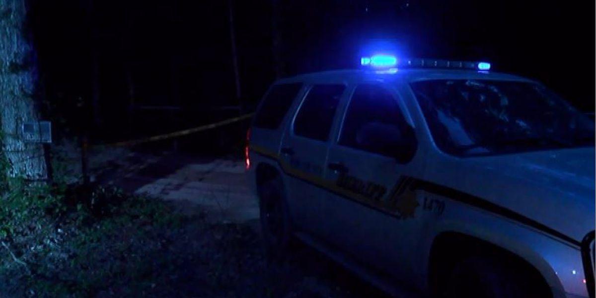 Bibb Co. authorities investigate body found roadside, under power lines