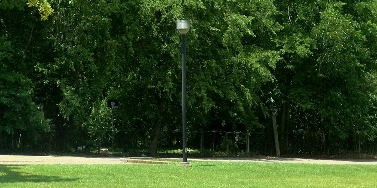 East Lake Park plagued by copper thieves