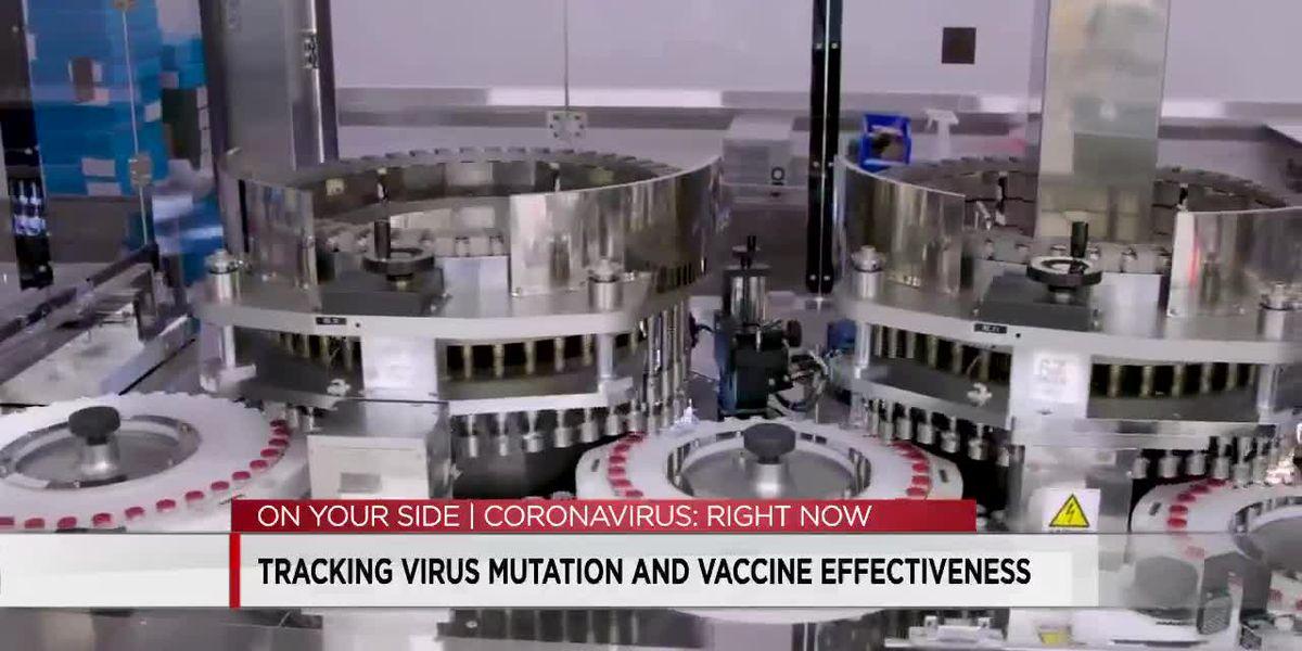 COVID virus mutation explained