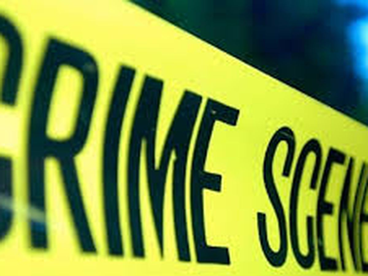 Two people found shot to death near I-59/20 in Bessemer