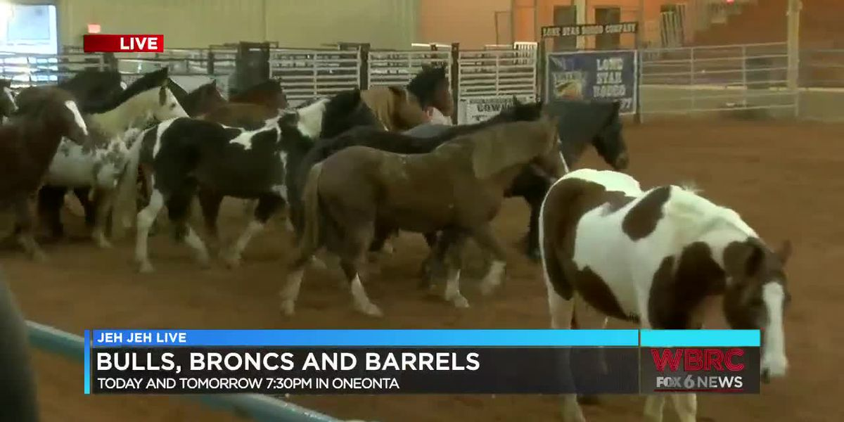 Jeh Jeh Live: Bulls, Broncs and Barrels