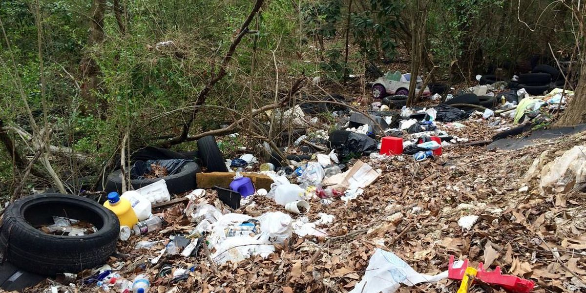 On Your Side Investigation: Birmingham begins cleanup of illegal dump in Inglenook