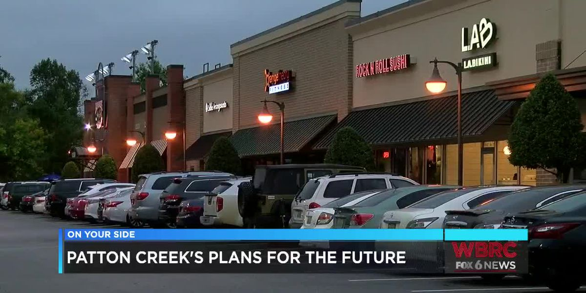 Action plan to keep businesses at Patton Creek
