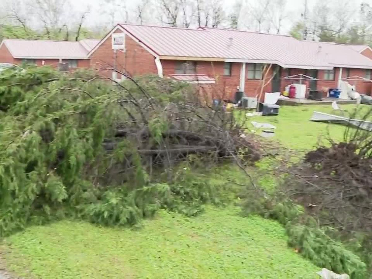 Birmingham crews to collect storm debris from March 25 tornado