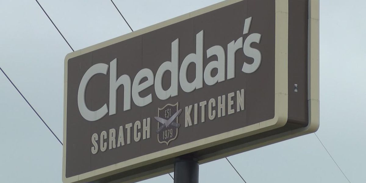 Job fair Friday for displaced Cheddar's employees in Tuscaloosa