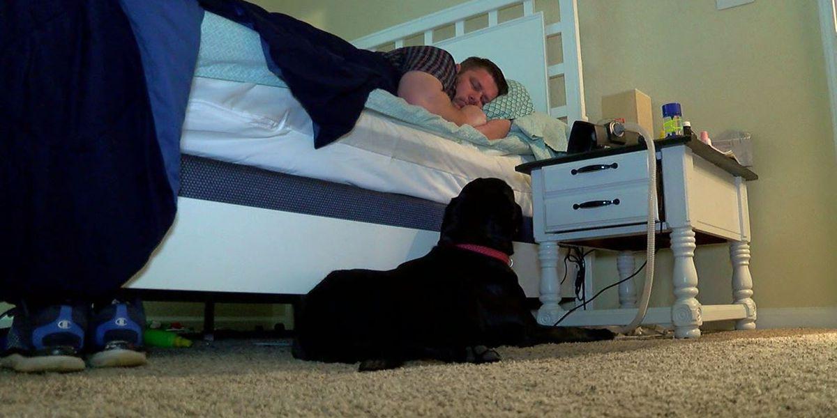 Iraq War veteran says service dog saves his life every day