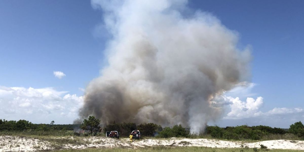 Photos show large fire at state park on Alabama coast