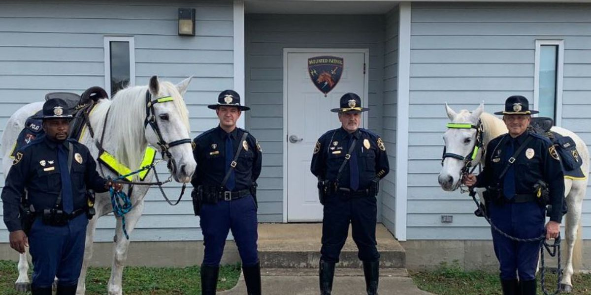 'Goodbye' to Birmingham's Mounted Patrol Unit