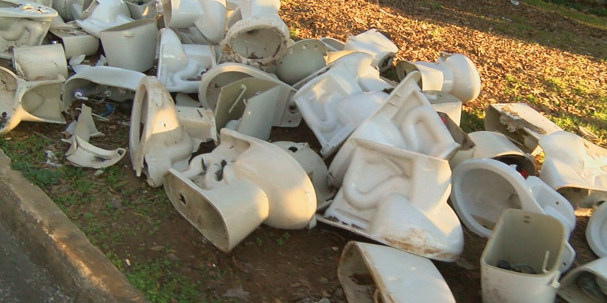 City investigating after dozens of toilets found dumped in Roebuck neighborhood