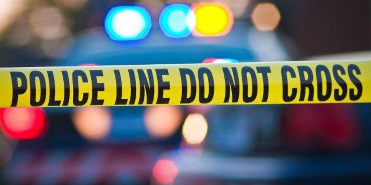 Pedestrian killed on Green Springs Hwy