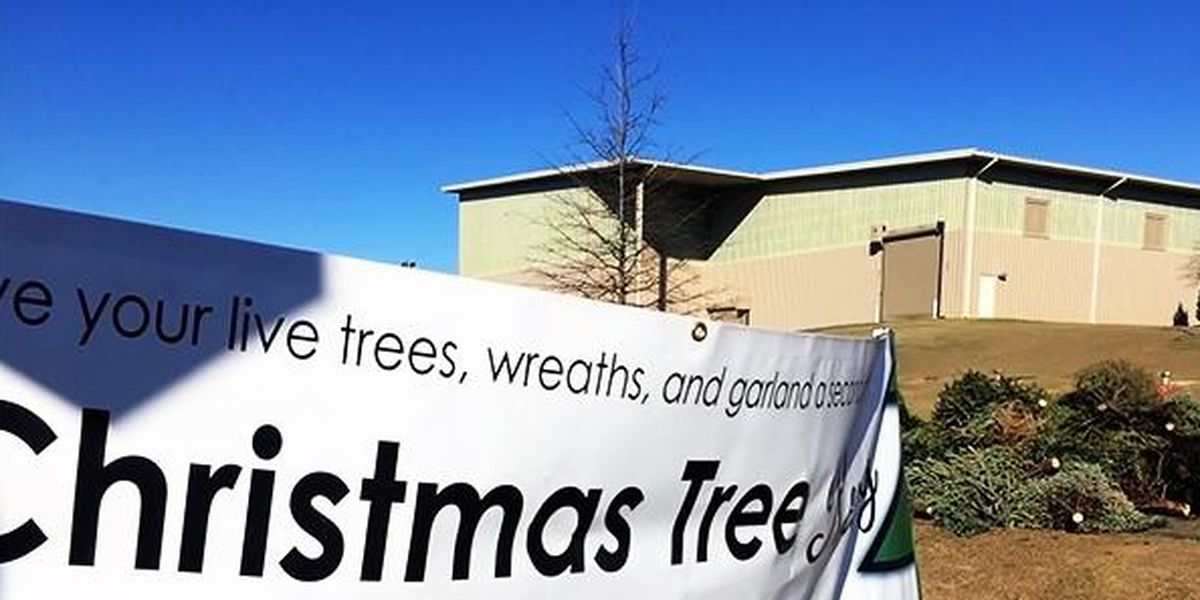 Free Christmas tree recycling underway in Tuscaloosa