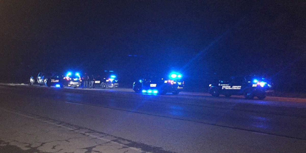 High speed chase on I-65 ends in crash